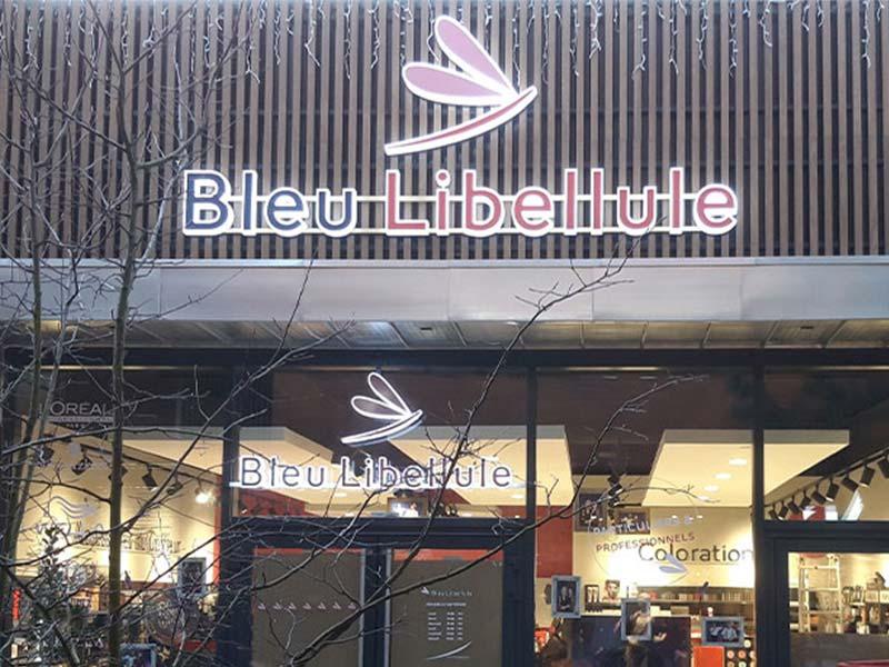 bleu-libellule-3