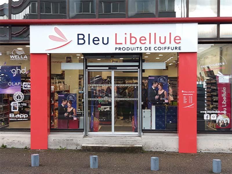 bleu-libellule-4